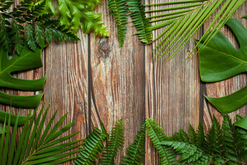Wall Mural - Creative nature layout made of tropical leaves. Summer concept. Fern Palm and monstera leaf on wood table. Nature beach background layout with free text space.