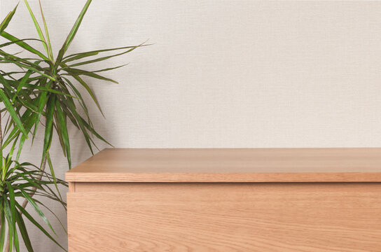 Wooden chest of drawers, on the left is a living plant dracaena