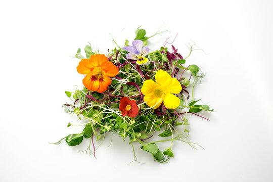 Edible flowers and microgreens mix isolated: pea shoots, broccoli, orach, nasturtium, begonia, viola