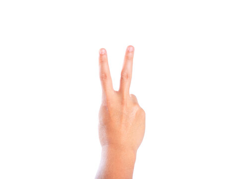 The gesture of the hand. Two fingers raised up. Hand showing victory sign(v sign) on white background.