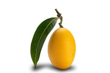 Fototapete - Side view of freshly harvested ripe Marian Plum fruit with leaf on white background with clipping path.