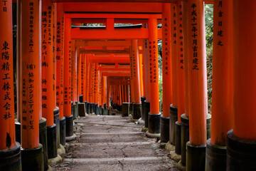 Red Torii gates in the famous shrine of Fushimi Inari Taisha in Kyoto Japan.