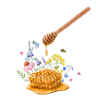 Beautiful composition with watercolor hand drawn honey with spoon and flowers. Stock illustration.