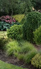 krajobrazowe ogród drzewa roślina trawa zielony pejzaż krajobrazowy trawnik park roślina lato...