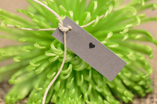 Flower name tag for a wedding reception made with a green flower and cardboard tag