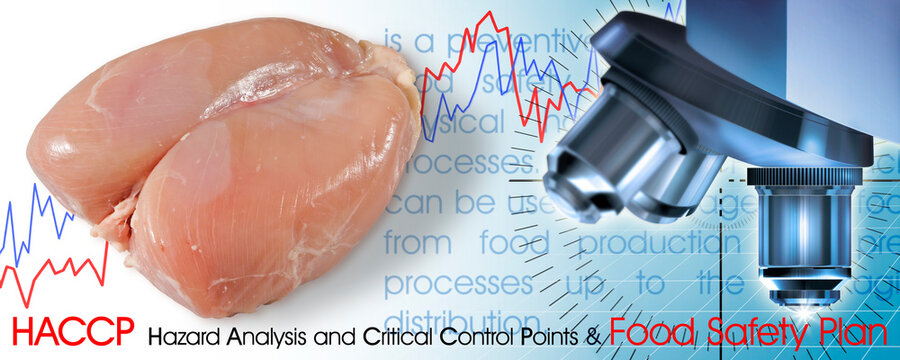 Fresh chicken meat  HACCP (Hazard Analyses and Critical Control Points) concept with graphs and microscope analysis - Food Safety and Quality Control in food industry