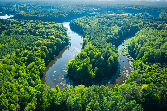 Curvy river between forests. Aerial view of wildlife in Poland