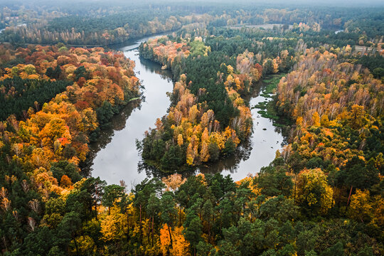 Dark autumn forest and river. Aerial view of wildlife, Poland