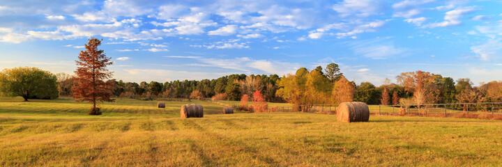 Fototapeta Hay Bales On The East Texas Landscape