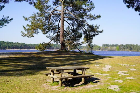 picnic table sits ready for picnic aside lake in Hostens gironde france