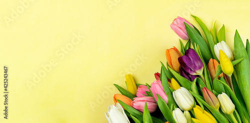 Bouquet of tulips flowers on yellow background