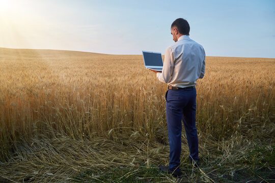 A farmer agronomist works in the field with a laptop using advanced high technologies in growing wheat