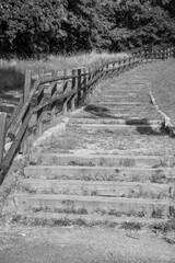 Fototapeta schody zrobione z drewnianych belek prowadzące na górę wzdłuż drzew, drewniana poręcz obraz