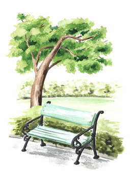 City bench under a tree in the park, Watercolor hand drawn illustration, isolated on white background