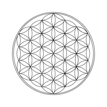 Flower Of Life Black Outline. Sacred geometry. - Vector illustration