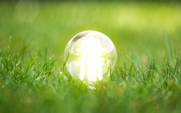 energy efficient led filament Lightbulb Glowing in Grass. planet's climat change and Green Energy Concept