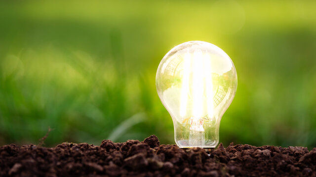 energy efficient led filament Lightbulb Glowing in ground with Grass on the background. planet's climat change and Green Energy Concept