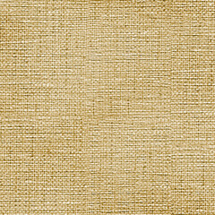 Texture of simple linen (canvas) fabric close up