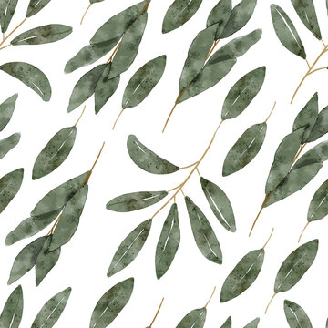 watercolor botanical green leaf seamless pattern