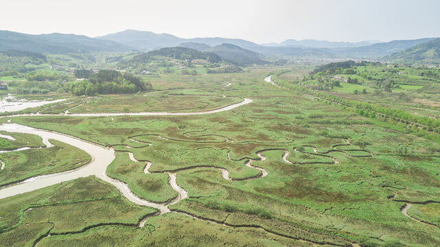 aerial view of serpentine marsh crossed by a river