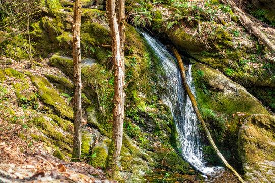 Kleiner Wasserfall in der Wäschbach-Klamm