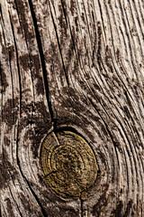 Fototapeta Wiekowe drewno obraz