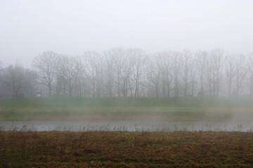 Poranna mgła nad rzeką w parku.