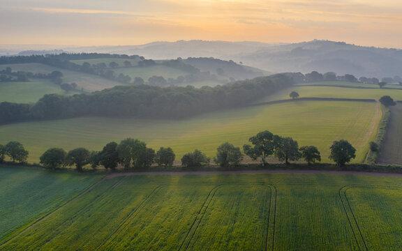 Aerial vista of rolling farmland in summer time, Devon, England, United Kingdom