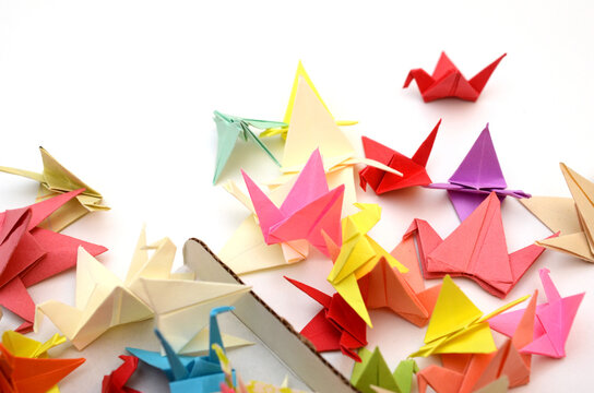 Flock of origami birds with box