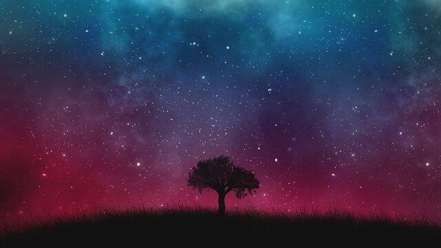 дерево и космос