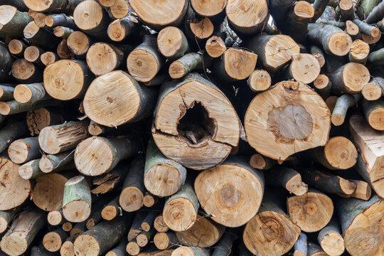 Motif de bois - stère de bois photographiée en gros plan - buches coupées