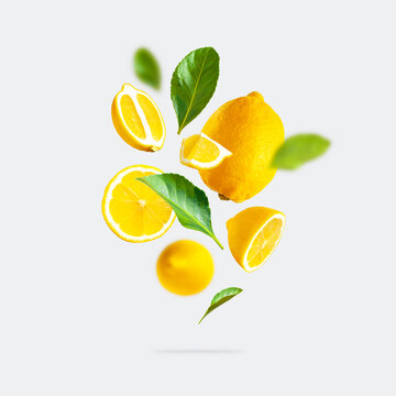 Juicy ripe flying yellow lemons, green leaves on light gray background. Creative food concept. Tropical organic fruit, citrus, vitamin C. Lemon slices. Summer minimalistic bright fruit background