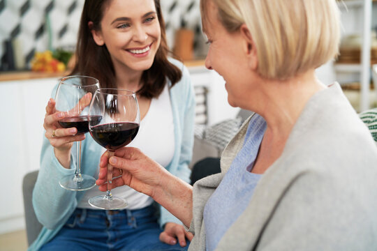 Happy women toasting in wine at home