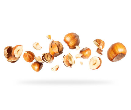 Crushed hazelnuts close-up hovered in white space