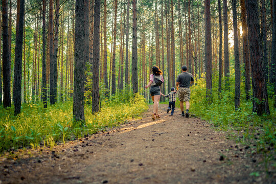 Family walking in the forest