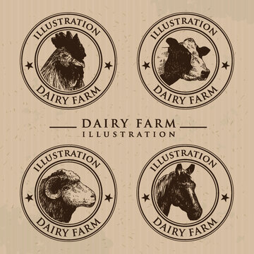 Illustration of the dairy farming, Vintage meat labels. Ideas for Farm Market and butcher shop