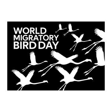 flamingo world migratory bird day poster design vector illustration