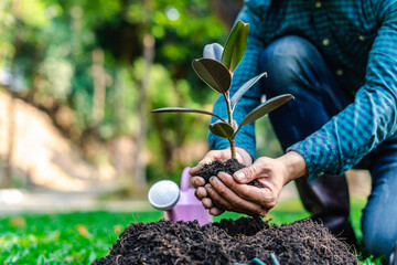 World environment day reforesting, nature and ecology concept. The hands of the young man were...