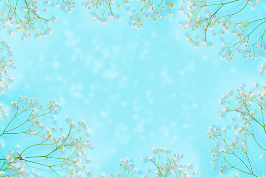 Abstract floral background. Frame made of flowers. Natural pattern.