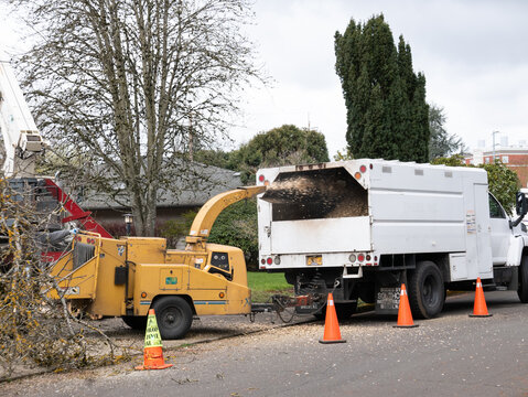 large wood chipper and truck  in front yard after tree removal