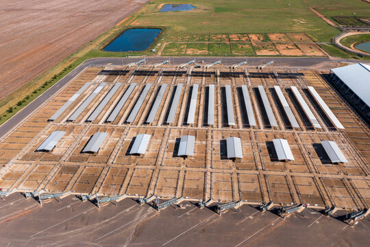 The Central West Livestock Exchange in regional Australia