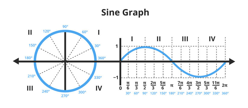 Vector mathematical illustration of sine curve in graph or chart and unit circle showing sine graph. Gonometric or goniometric function. The icon is isolated on white. Sine function, wave, angle.