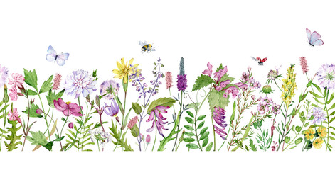 Obraz Watercolor seamless border with wildflowers, bumble bees, butterflies and lady bugs. Filed flowers header. - fototapety do salonu