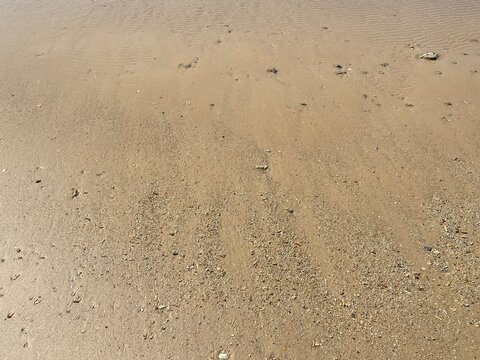 low tide on sunny golden beach