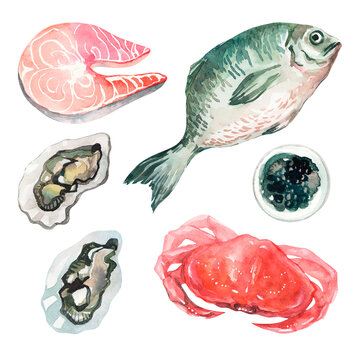 Watercolor set with seafood on a white isolated background. Crab, salmon fillet, black caviar, fish and oysters. Clipart with seafood. Mediterranean Kitchen. Set with seafood for cafes and restaurants