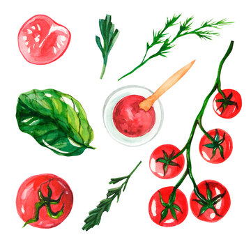 Watercolor set with vegetables on a white isolated background. Clipart with fresh and healthy food. Cherry tomatoes on a branch, rosemary, tomato sauce, spinach, tomatoes, dill. Vegan clipart for kitc