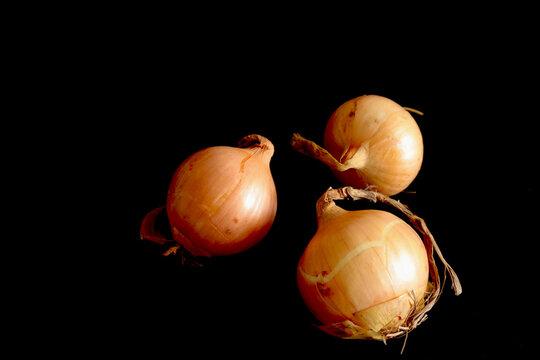 fresh raw yellow onions on black background