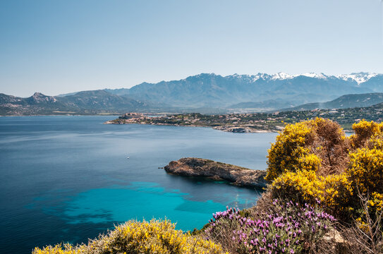 Citadel of Calvi and mountains in Corsica