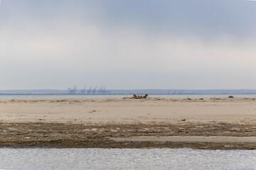 Martwa Wisła i plaża na Wyspie Sobieszewskiej