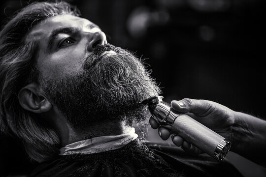 Bearded man in barbershop. Man visiting hairstylist in barbershop. Barber works with a beard clipper. Hipster client getting haircut. Hands hairdresser with a beard clipper, closeup. Black and white